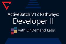 ActiveBatch Pathways: Developer II